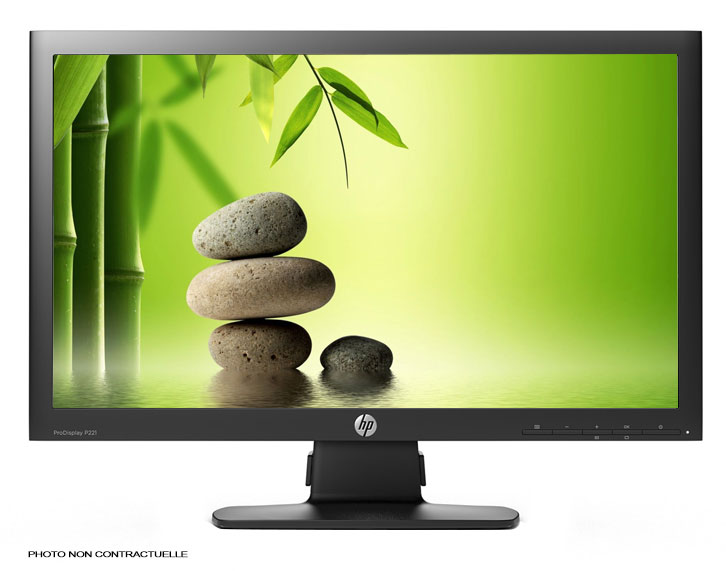 ECRAN HP ProDisplay P221 21,5""